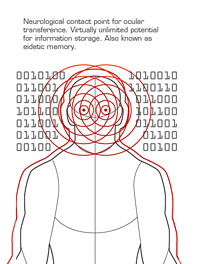 AT diagram Matt N.jpg