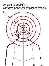 AT diagram Connie.jpg