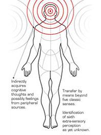 AT diagram Matt P.jpg